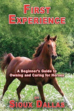 First Experience: A Beginner's Guide to Owning and Caring for Horses
