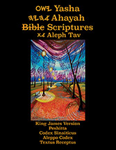 Yasha Ahayah Bible Scriptures Aleph Tav (YASAT) Study Bible (2nd Edition 2018)